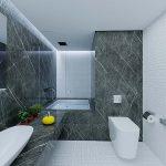 سقف کارب سرویس بهداشتی